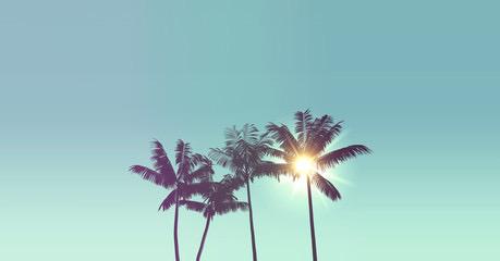 palmiers-Laulanebijoux